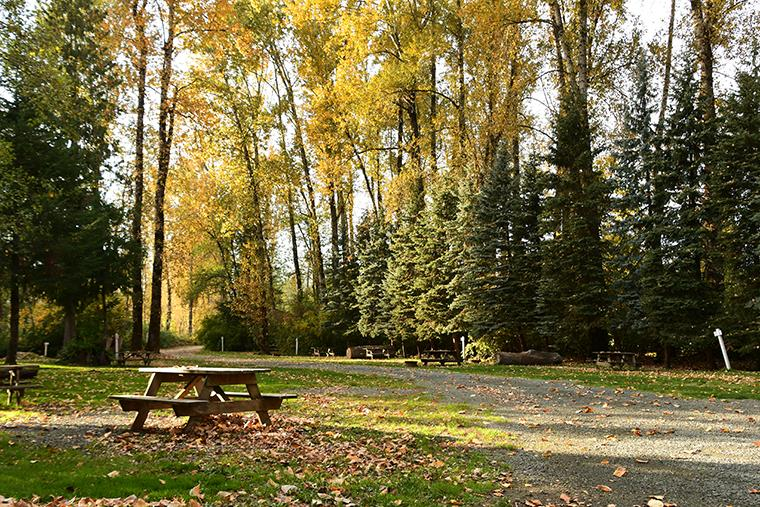The campground in fall