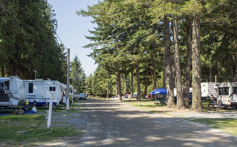 The campground in summer